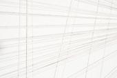 Wall Drawing 815 (Detail), 2009. Second drawn by Kazuko and Eizan Miyamoto.  EXILE. Nails, cotton Masonline, 540 x 300 x 4 cm.