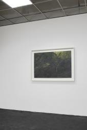 Stuart Brisley: Stuart Brisley, 2012. Installation view, EXILE